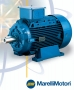 Marelli Induction Motor